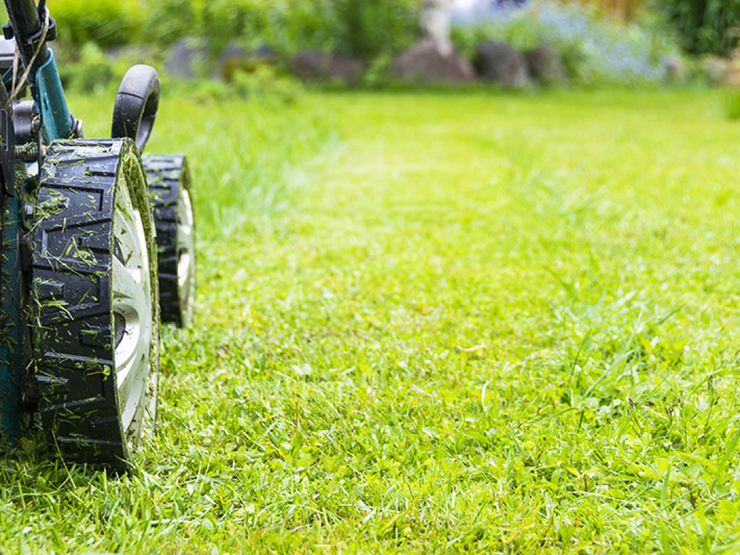 PROFESSIONAL LANDSCAPING AND LAWN CARE SERVICES IN THE BERLIN & OCEAN PINES, MD & SURROUNDING AREAS